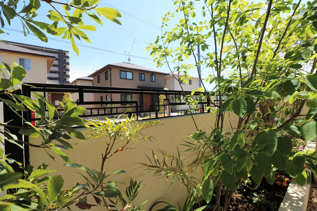 福山市神辺町 F様邸お庭工事。2020年6月6日